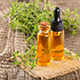 8 Health Benefits Offered By Red Thyme Essential Oil