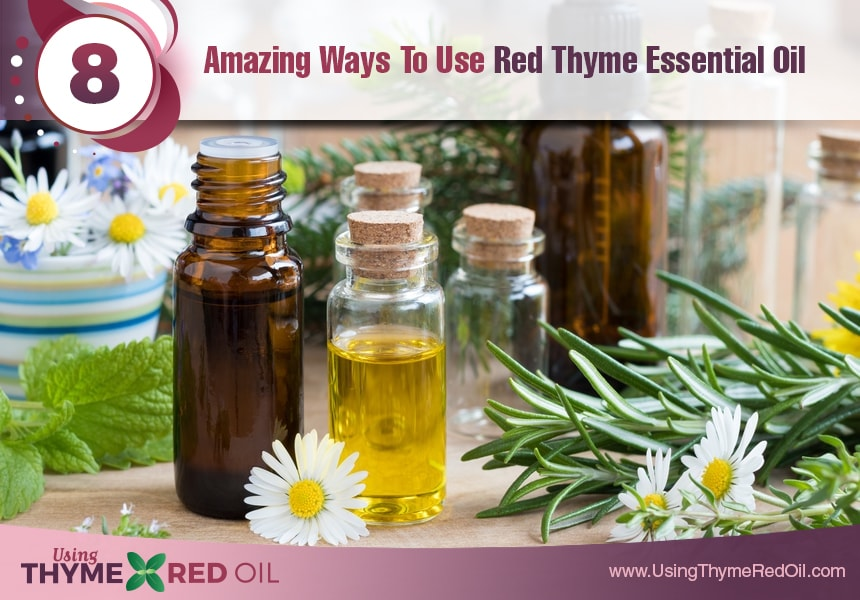 red thyme essential oil uses