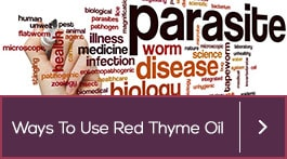 red thyme essential oil for healing